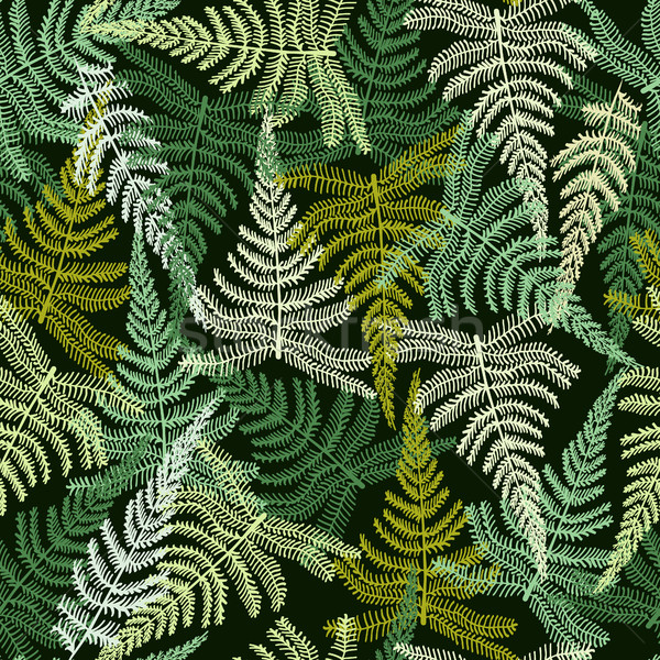декоративный шаблон папоротник орнамент лес вектора Сток-фото © Margolana