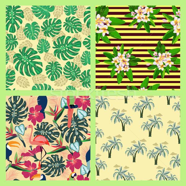 Set texture tropicali estate simbolo pattern Foto d'archivio © Margolana