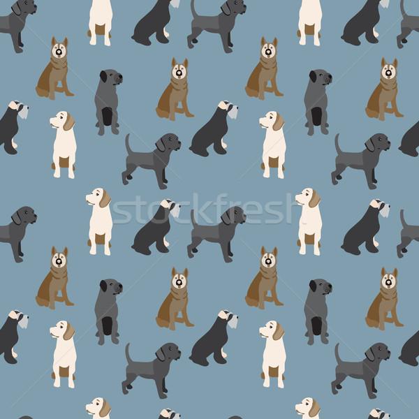 パターン 犬 カラフル ベクトル 漫画 スタイル ストックフォト © Margolana