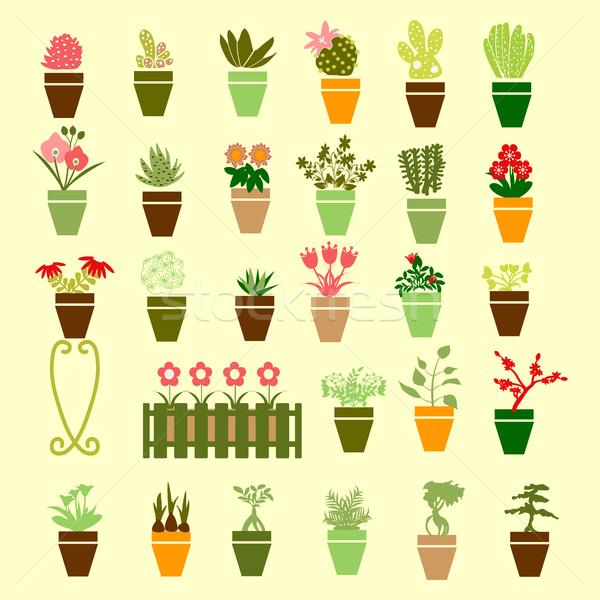 Wektora kolekcja kolorowy sylwetka ogród kwiaty Zdjęcia stock © Margolana