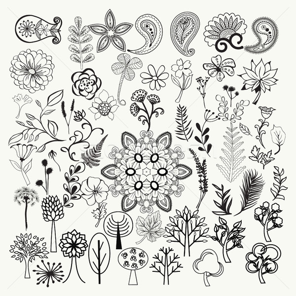 big collection of hand-drawn black and white ornate flowers, pla Stock photo © Margolana