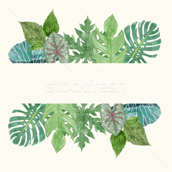 Botanical background with tropical leaves.Summer Floral Design e Stock photo © Margolana