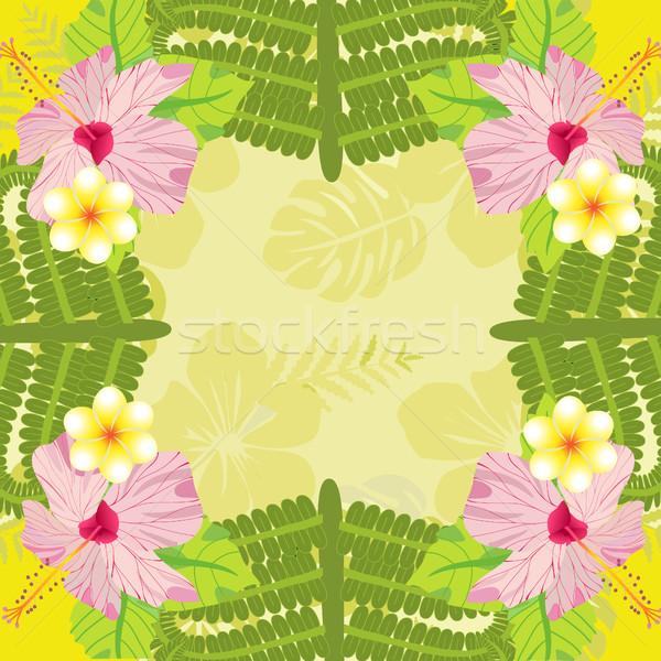 Tropikalnych roślin kwiaty wzór wektora liści palmowych Zdjęcia stock © Margolana