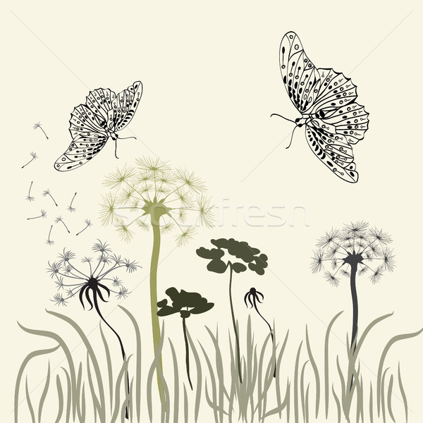 луговой трава природы бабочки белый Сток-фото © Margolana