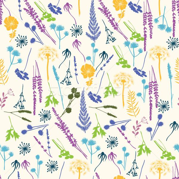 Wektora kwiatowy paproci pozostawia Zdjęcia stock © Margolana