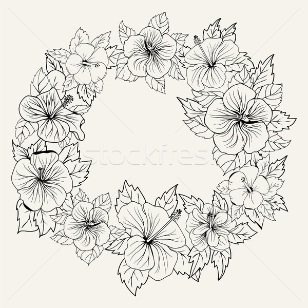 Círculo ornamento quadro hibisco flor folhas Foto stock © Margolana