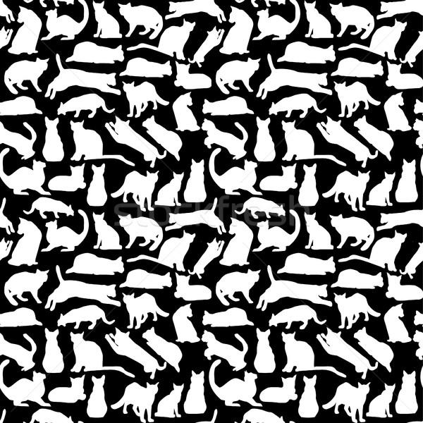 кошек коллекция силуэта вектора белый черный Сток-фото © Margolana
