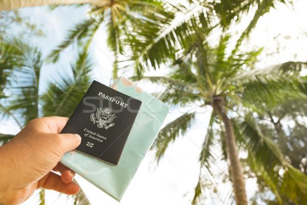 стороны паспорта карта небе пальмами Сток-фото © Margolana
