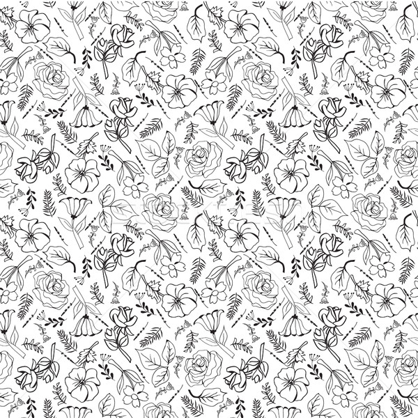 pattern of flowers hand-drawing collection black and white flowe Stock photo © Margolana