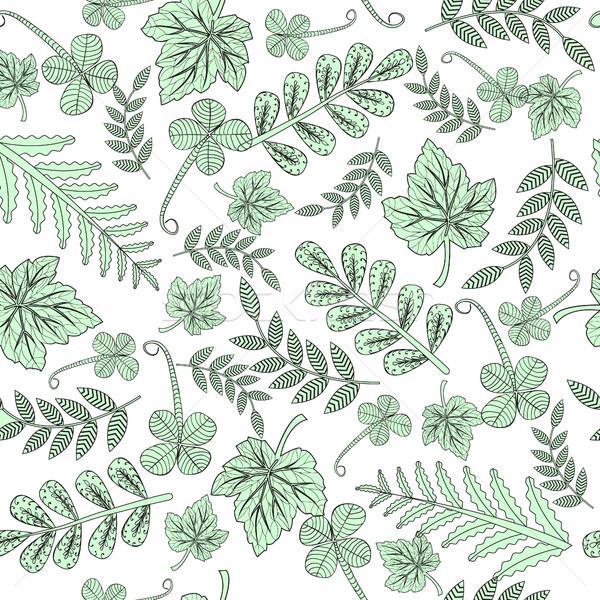 Foresta foglie doodle pattern adulto Foto d'archivio © Margolana