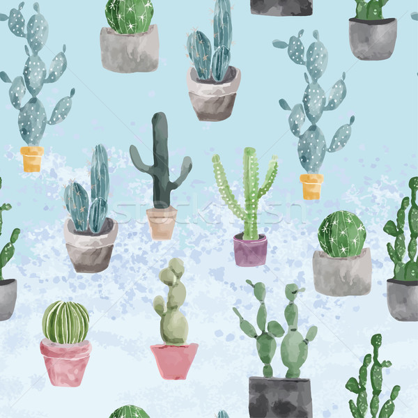 Pattern of cactus and succulents on light blue texture. Stock photo © Margolana