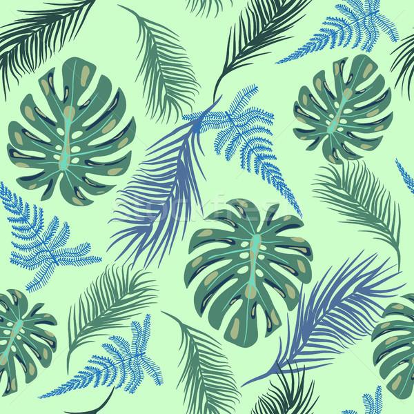 Egzotik bitki yaprakları vektör tropikal moda Stok fotoğraf © Margolana
