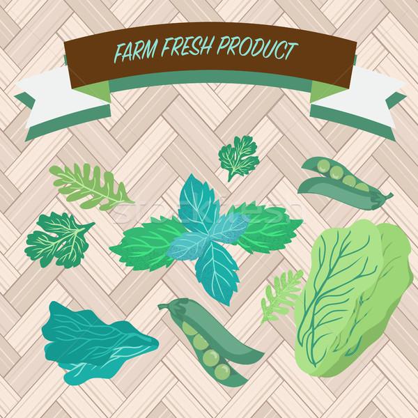 Groene culinair kruiden koriander erwten ingesteld Stockfoto © Margolana