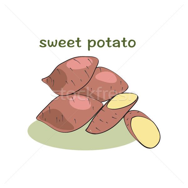 Słodkie ziemniaki odizolowany biały ilustracja wektora Zdjęcia stock © Margolana
