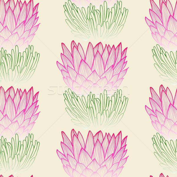 Tropical protea flower background.  Stock photo © Margolana