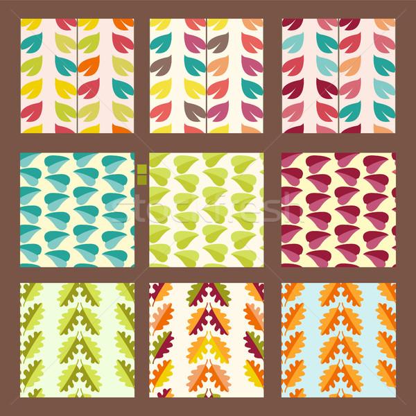 вектора набор листьев декоративный Сток-фото © Margolana