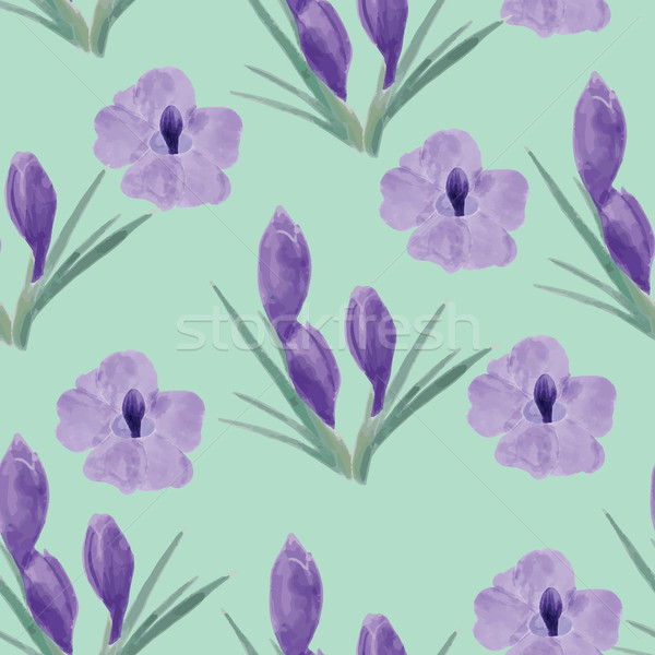 Beautiful orchid violet and crocuses flowers illustration Stock photo © Margolana