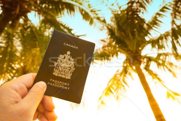 El pasaport harita gökyüzü palmiye ağaçları Stok fotoğraf © Margolana
