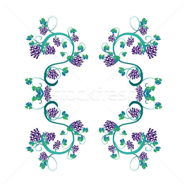 illustration with  elegant vines and bunches of grapes frame Stock photo © Margolana