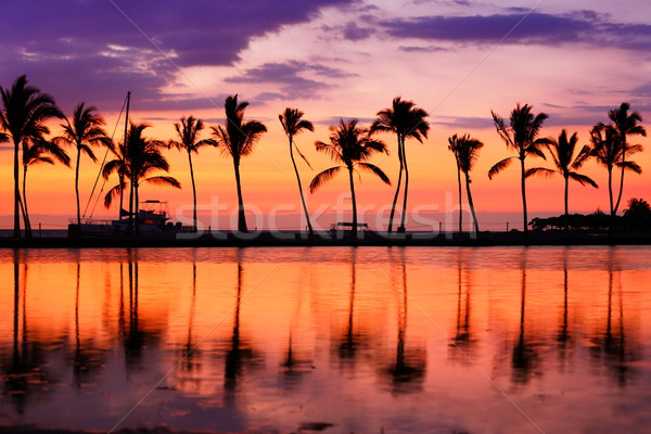 Hawaii plage coucher du soleil tropicales paradis paysage Photo stock © Maridav