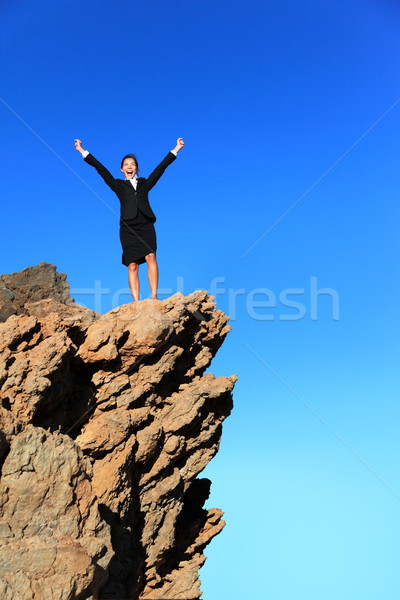 Stock photo: Business success concept