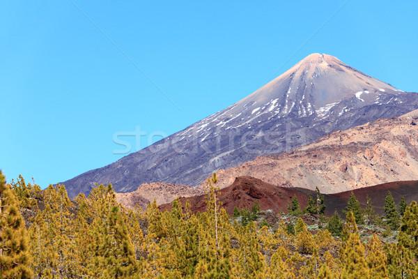 Tenerife landschap vulkaan mooie vulkanisch landschap Stockfoto © Maridav