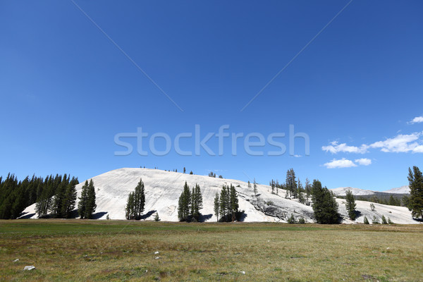 Yosemite National Park, Pothole Dome, California Stock photo © Maridav