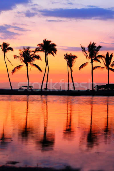 Stock photo: Paradise beach sunset with tropical palm trees
