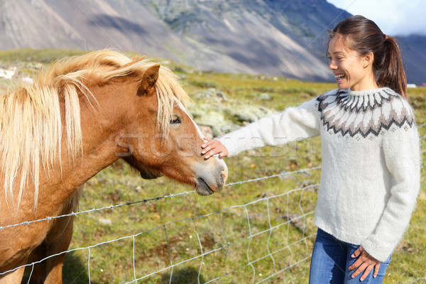 Horse - woman petting Icelandic horses in sweater Stock photo © Maridav