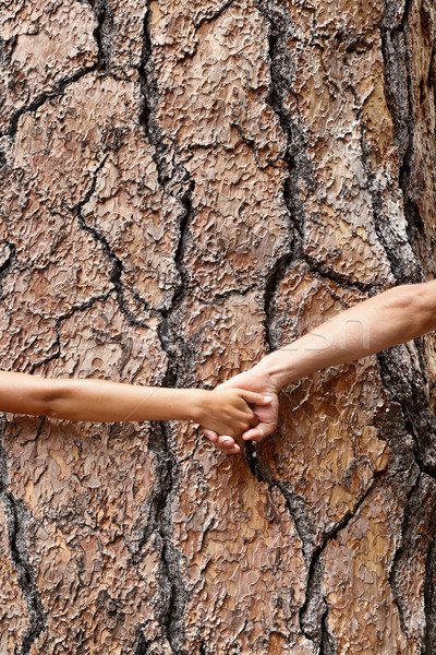 Nature Earth lovers - tree huggers holding hands Stock photo © Maridav