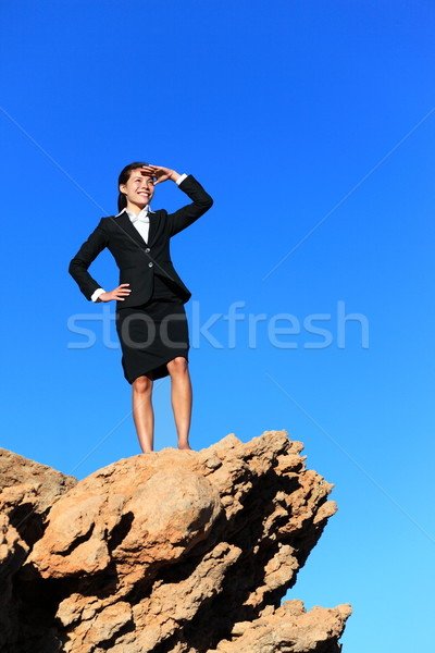 Business woman looking from mountain top Stock photo © Maridav