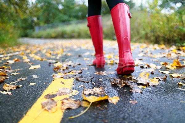 Autumn fall with colorful leaves and rain boots Stock photo © Maridav