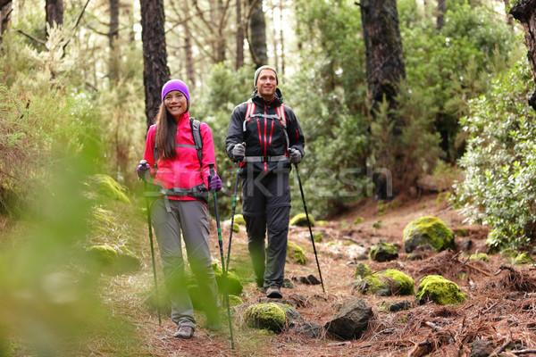Escursionista Coppia backpackers escursioni foresta percorso Foto d'archivio © Maridav