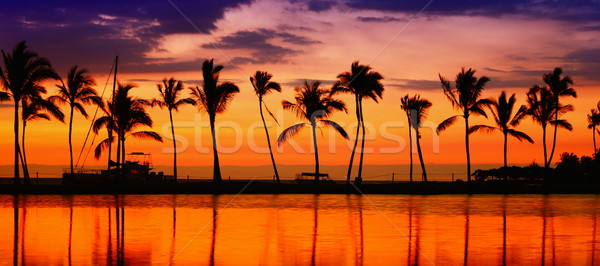 Stock photo: Travel banner - Beach paradise sunset palm trees