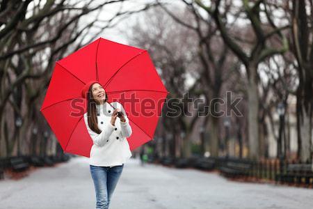 Stockfoto: Paraplu · vrouw · lopen · Central · Park · winter · vallen