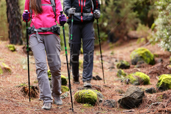 Hiking - Hikers walking in forest with poles Stock photo © Maridav