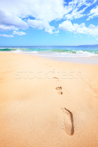 Beach travel vacation concept - footsteps in sand Stock photo © Maridav