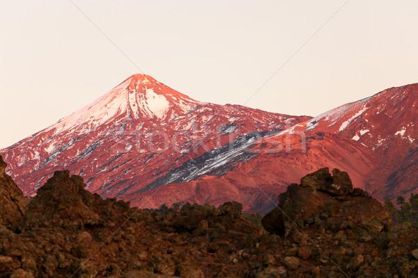 Tenerife volkan manzara güzel doğa manzara Stok fotoğraf © Maridav