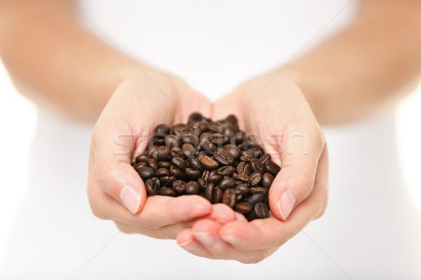 Coffee beans - woman showing coffee bean handful Stock photo © Maridav