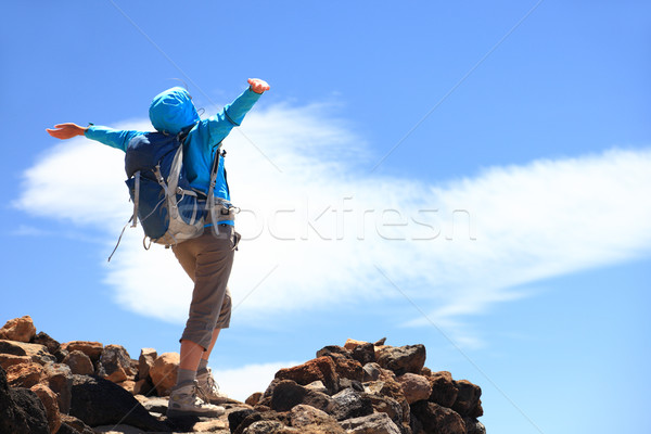 Success at top of mountain Stock photo © Maridav