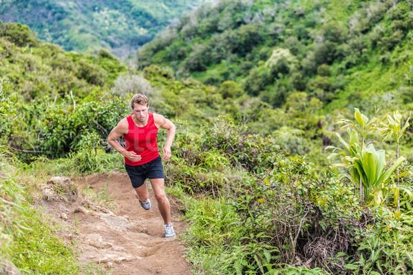 Trail runner running in mountain nature landscape Stock photo © Maridav