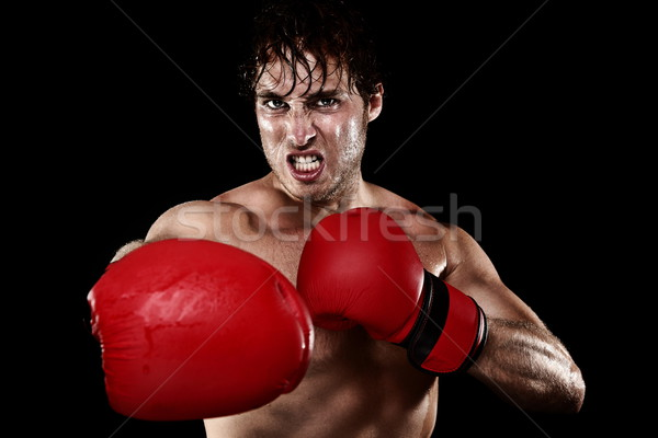 Boxing boxer Stock photo © Maridav