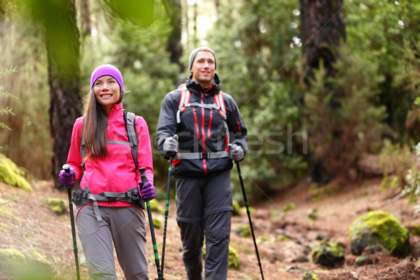 Hiker couple backpackers hiking in forest Stock photo © Maridav