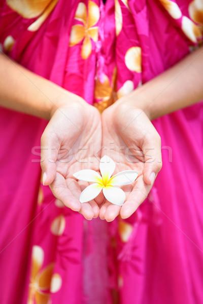 Hawaiian flower in cupped hands Stock photo © Maridav