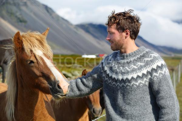 Icelandic horses - man petting horse on Iceland Stock photo © Maridav