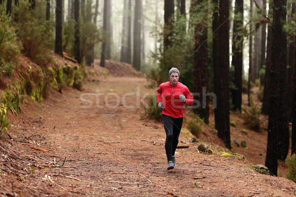 Man running in forest woods training Stock photo © Maridav