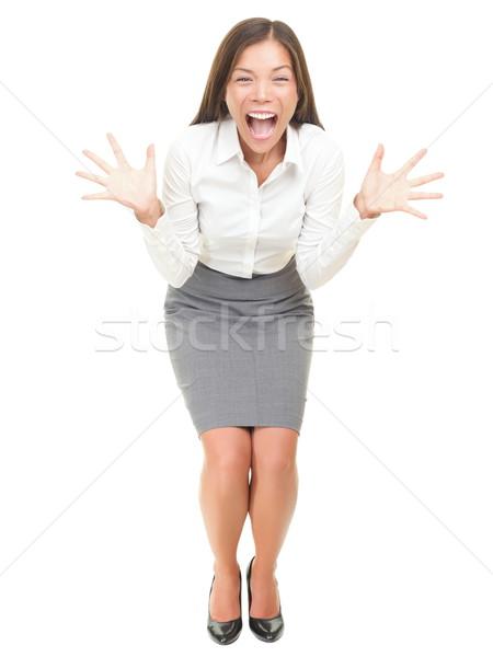 Foto stock: Loco · gritando · mujer · de · negocios · excitado · mujer · de · negocios