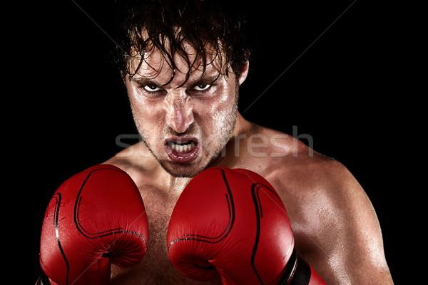 Boxeador boxeo enojado sudar Foto stock © Maridav