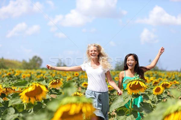 Dois mulheres jovens corrida girassóis feliz despreocupado Foto stock © Maridav