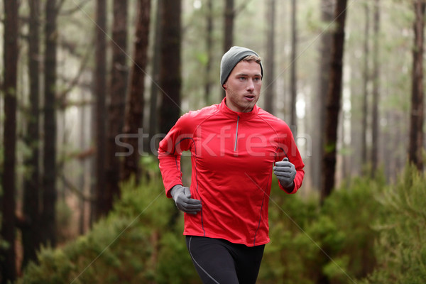 Running man in forest woods training Stock photo © Maridav